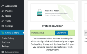 Tips for Preventing Image Theft in WordPress