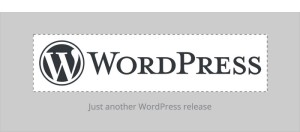"""WordPress 4.5 """"Coleman"""" Released, Check it Out!"""