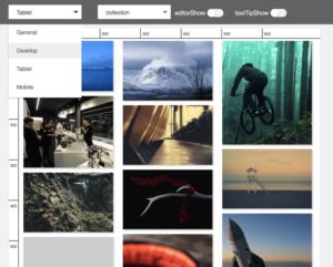 Elementary WordPress Plugin: The Future of Website Building