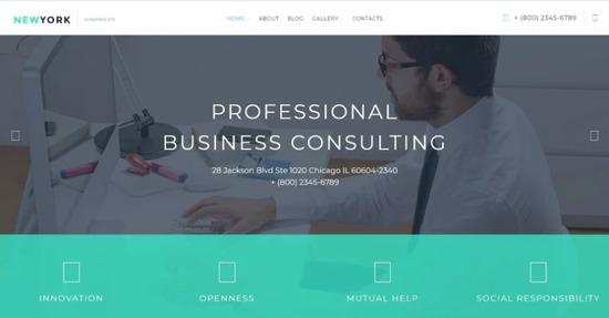 NewYork Business WordPress Theme